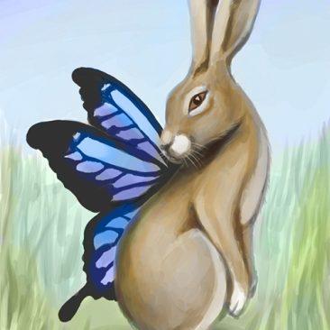 Lièvre-papillon